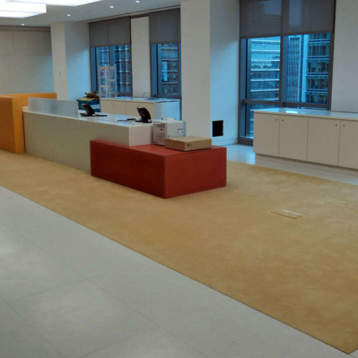 Inset reception area rug